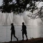 Ibirapuera está na lista dos melhores parques do mundo!